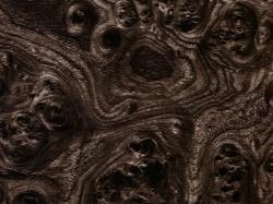 Черное дерево - 50 см